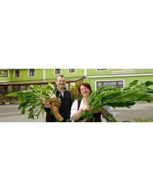 Yspertal in Österreich